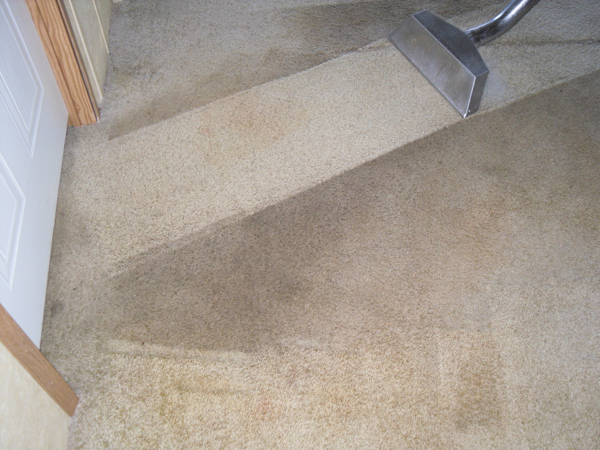 Carpet Cleaners Cumming Alpharetta Kings Carpet Cleaning